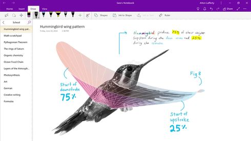 Microsoft OneNote for Windows 10.
