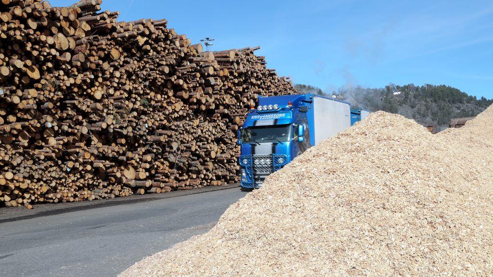 Tømmer som kommer til Norske Skog Saugbrugs i Halden. Flis t.h.  Bildet er tatt  i forbindelse med offisiell åpning av biogassanlegg våren 2017.
