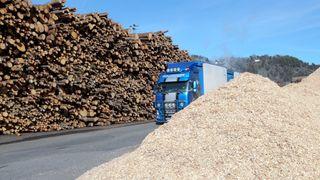 DN: Oceanwood kjøper Norske Skog
