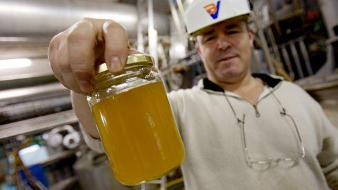 Klimaministeren vil ha økt norsk produksjon av miljøvennlig biodrivstoff