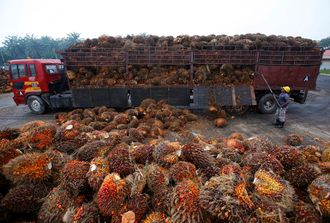 Palmeoljefrukter lesses av lastebil ved en palmeoljefabrikk i Indonesia i 2014.