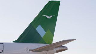 Widerøe-fly ble oppdatert - 8 fly satt på bakken