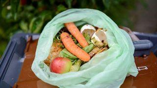 Bioplast utgjør under 1 prosent av de over 320 millioner tonn plast som produseres hvert år