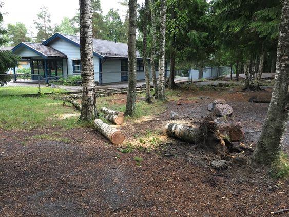 KAPPET NED: Brannvesenet kom raskt på stedet og ryddet området.