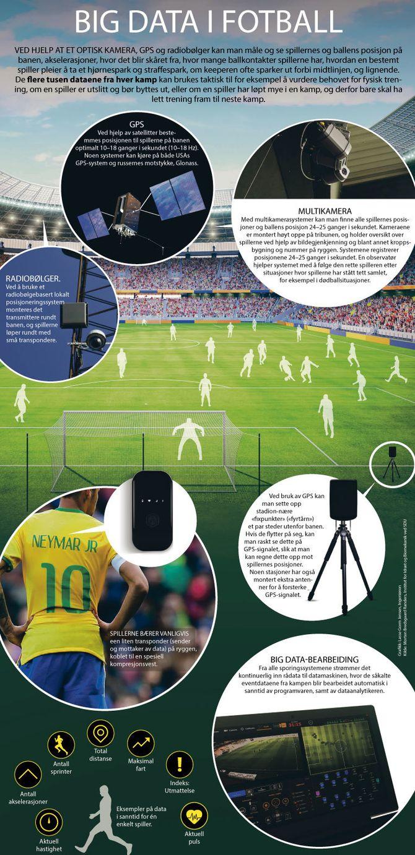se web kameraer over hele verden orm