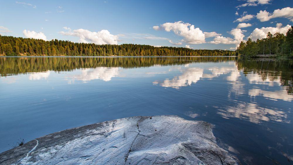 Kanadiske skoger er blant de som vokser på bergarter som avgir nitrogen til jord og planter.