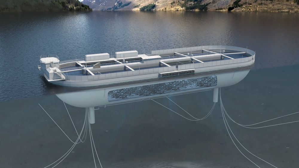 Stadion Laks har fått utviklingstillatelse for et lukket oppdrettsanlegg bygget som et avlangt basseng i betong. Bassenget skal romme 37.000 m3.