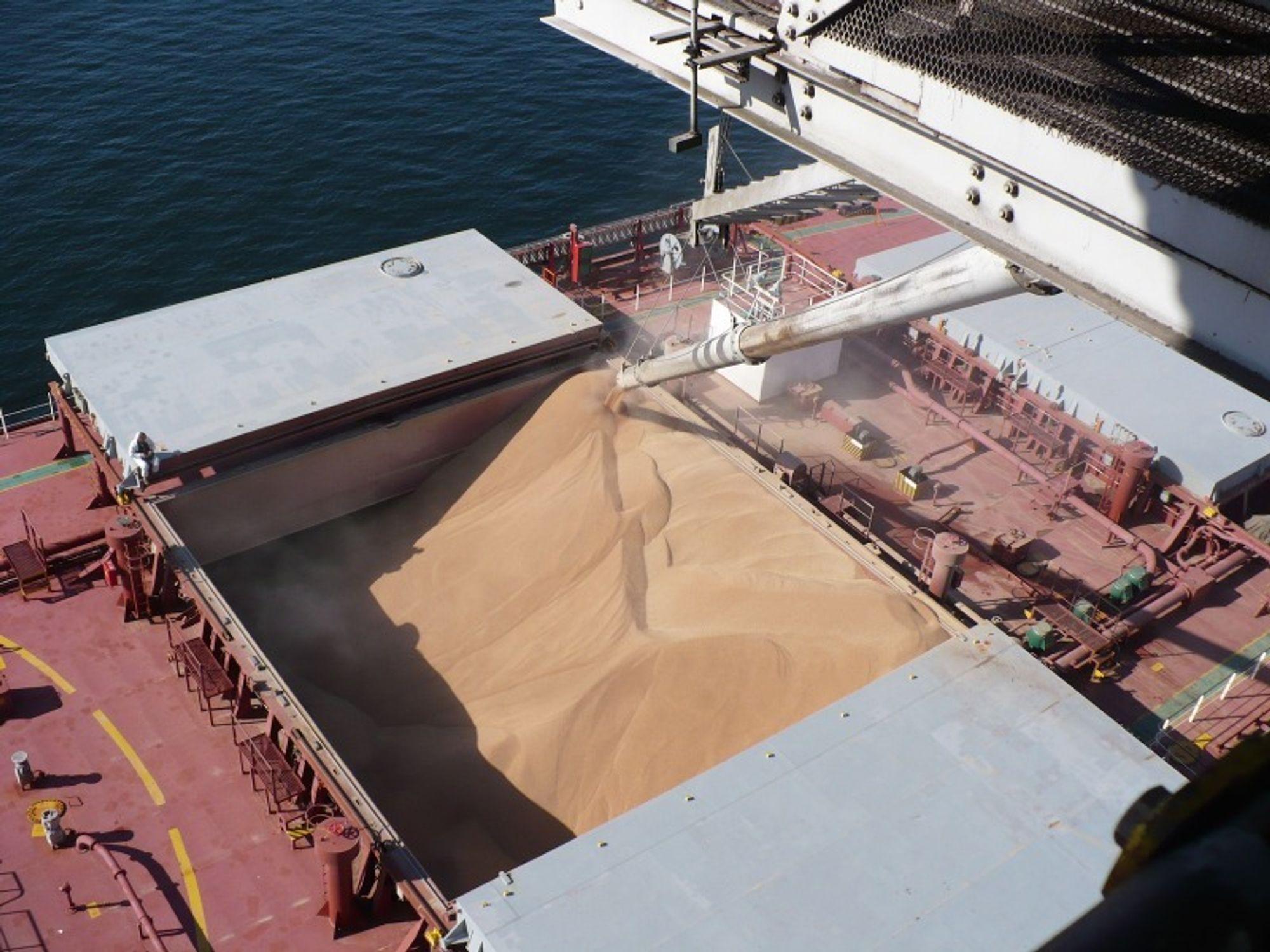 Lasting av bulkskip med korn.