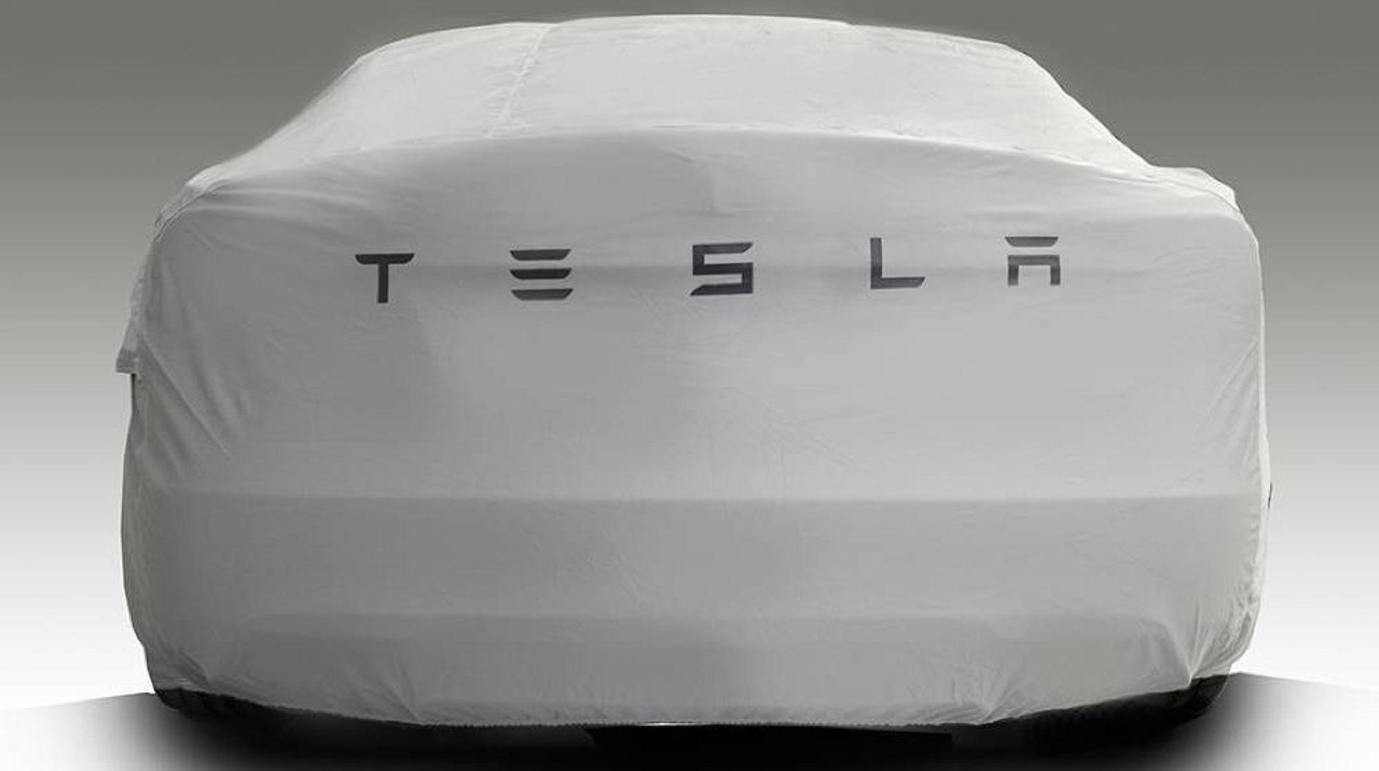 Mange av spørsmålene forbrukere sender til Forbrukerrådet omhandler Tesla.