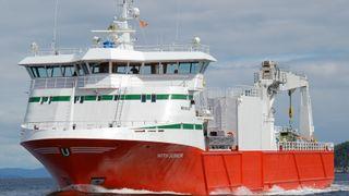 Rapport: Skip kan erstatte 4.500 vognlaster med fisk uten å bruke mer tid - sparer samfunnet 1 milliard kroner