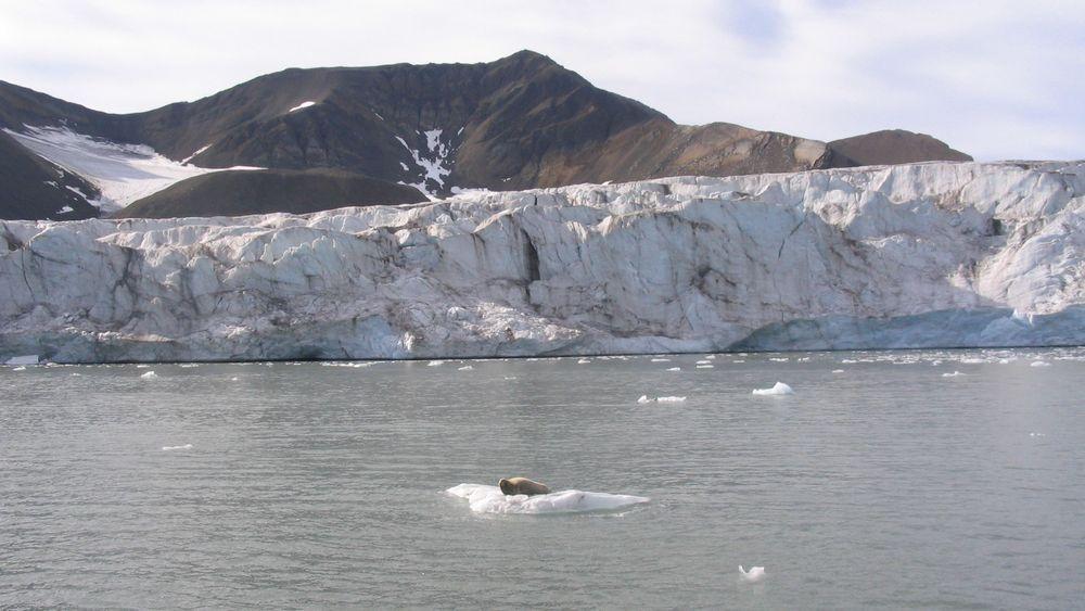 De samlede klimagassutslippene fra norsk territorium gikk ned med 1,9 prosent i fjor. Illustrasjonsfoto fra Grønland.