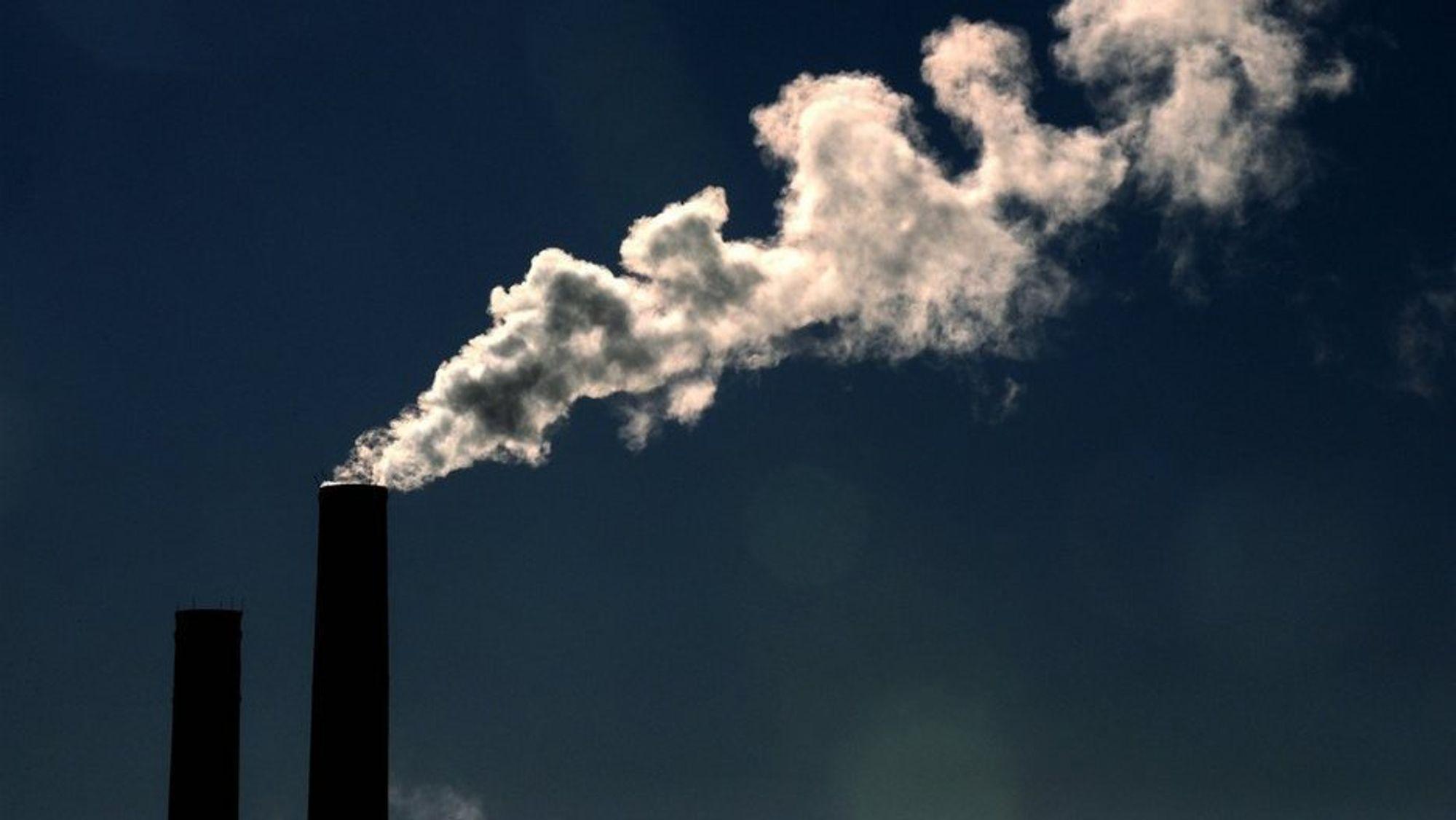 Metan er en drivhusgass, og stammer blant annet fra våtmarksområder, fra husdyr og fra kull- og gassproduksjon.