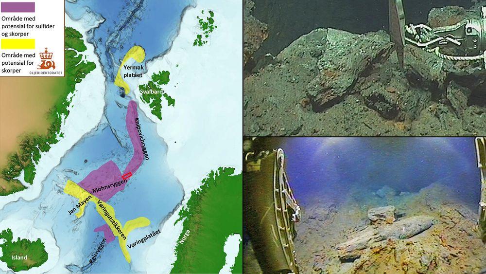 Oljedirektoratet har funnet et stort område med sulfidmineralerpå havbunnen, som ikke er kjent fra tidligere. Håpet er at det inneholder verdifulle metaller som på sikt kan utvinnes.