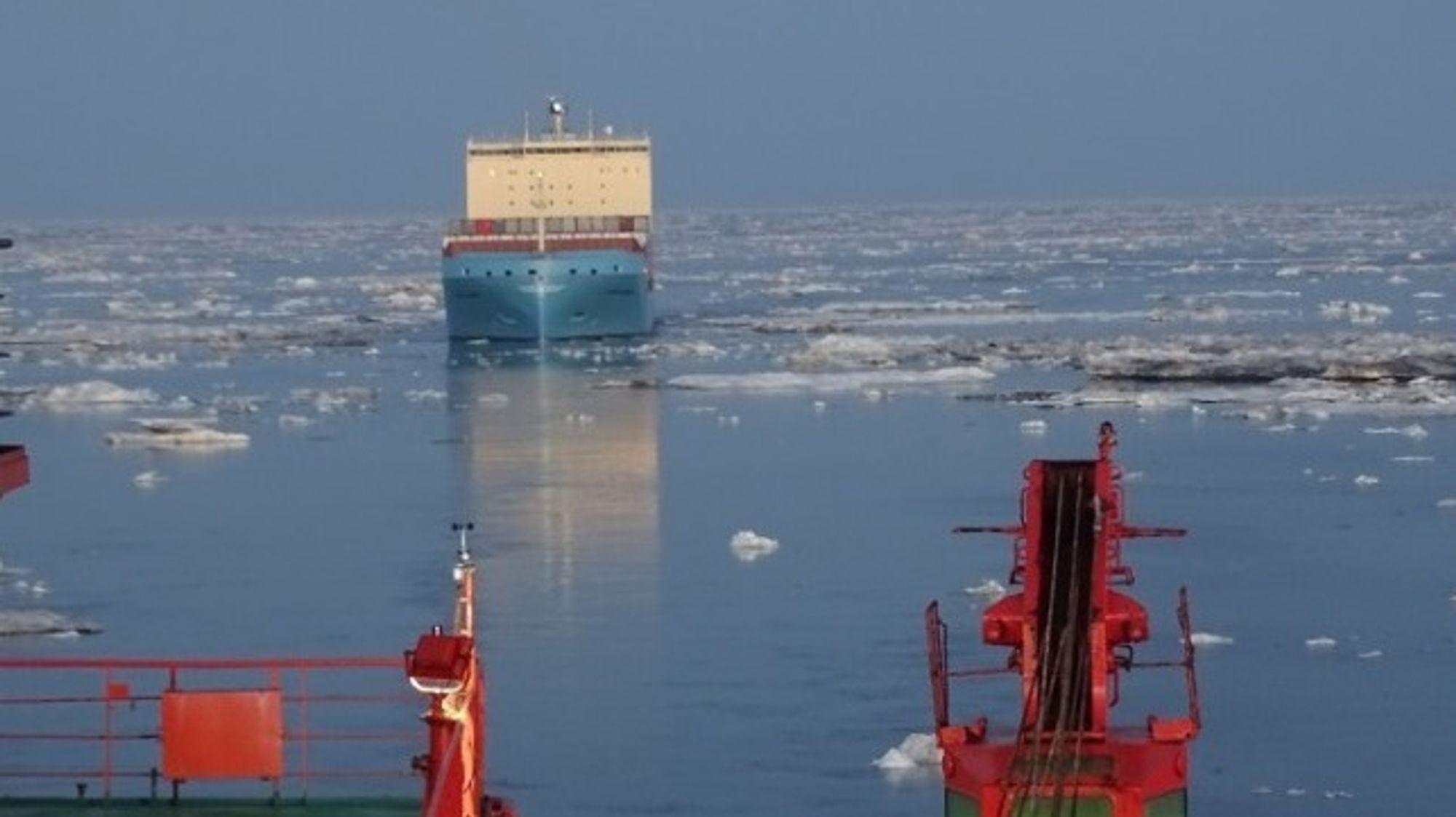 Venta Maersk gjennom Sannikov-stredet 11. september, fotografert fra Rosatom-isbryteren 50 Let Pobpedy.
