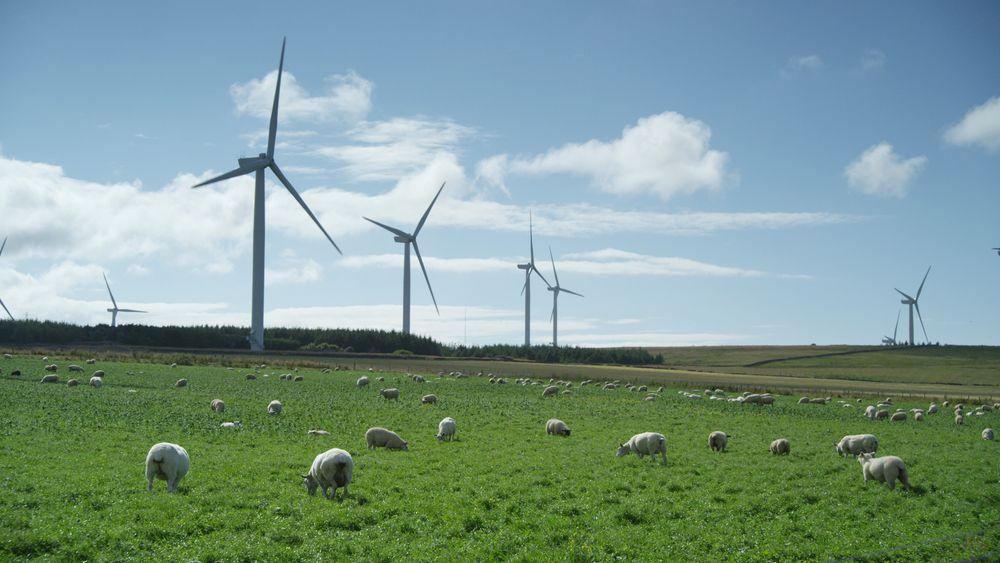 Statkraft kjøper opp vindkraft i Irland og Storbritannia. Selskapet planlegger omfattende investeringer i vind og sol de neste sju årene. Bildet er fra Baillie vindmøllepark i Skottland som Statkraft eier 40 prosent av.