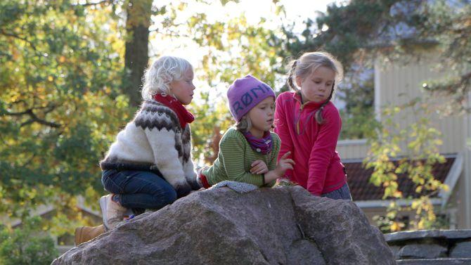 Askeladden Steinerbarnehage har et stort uteområde og ligger midt i naturen.