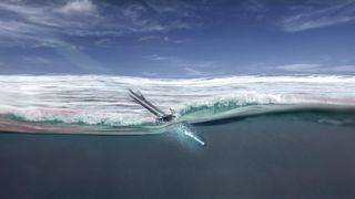 Se testen: Ny norsk ammunisjon svømmer gjennom vann og kan brukes mot torpedoer