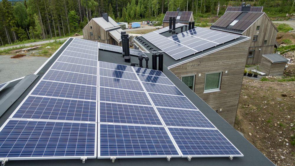 Den solrike sommeren har gitt installeringsboom for solcellepaneler i Norge. Her fra Økolandsbyen i Hurdal , der husene nesten utelukkende er bygget i trevirke og naturmaterialer og har solcellepaneler på taket for å være mest mulig selvforsynt med strøm.