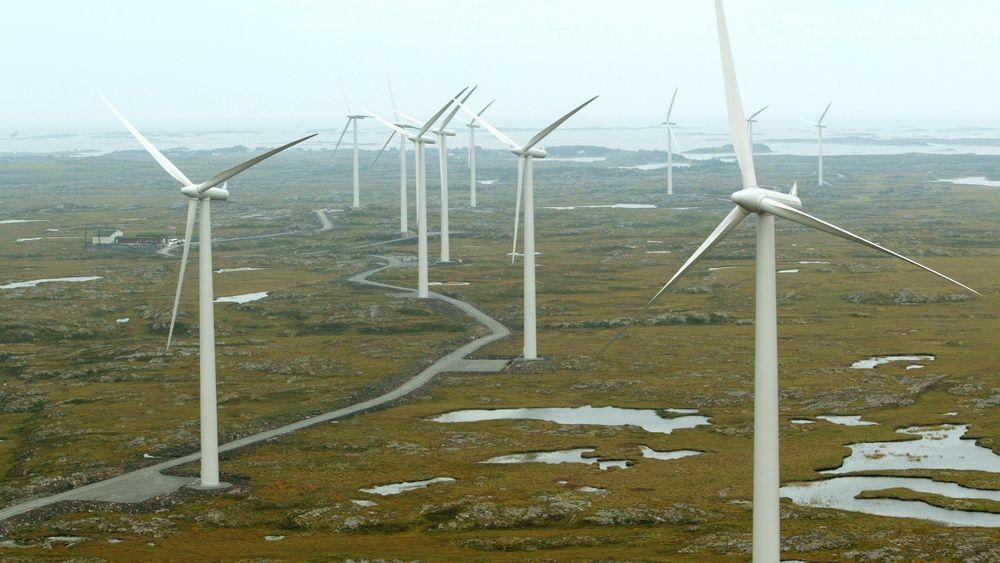 Naturvernerne er kritiske til omfanget og tempoet i den planlagte vindkraftutbyggingen i Norge. På bildet ser vi vindmølleparken på Smøla i Møre og Romsdal.
