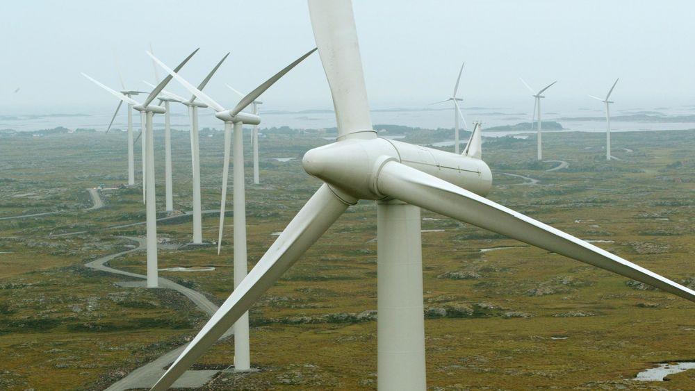 Siden 2012 har kostnadene for å bygge vindkraft i Norge sunket med cirka 30 prosent. Det gjør Norge attraktivt for utenlandske investorer.
