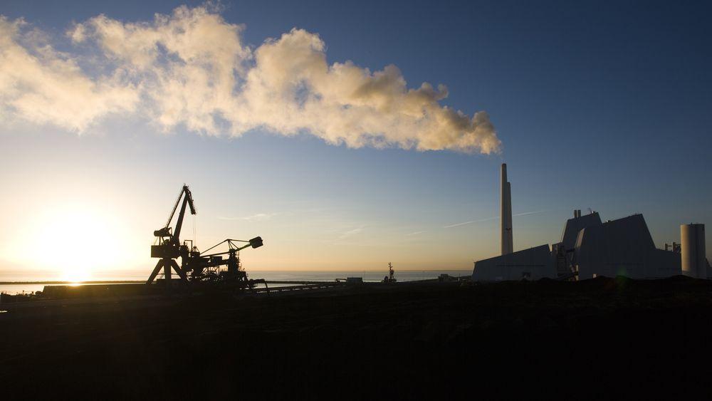 Avedøreværket utenfor København gikk over fra kull til fyring med halm og trepellets i 2011, etter press fra det danske Natur- og Miljøklagenævnet. Avedøreværket er Danmarks største kraftverk.
