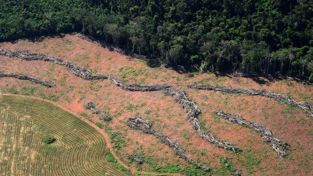 Et område med ulovlig hogst i delstaten Pará i Brasil. Bildet ble offentliggjort av brasilianske myndigheter i 2014.