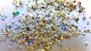 Vi vet svært lite om hvordan mikroplast truer økosystemene i ferskvann