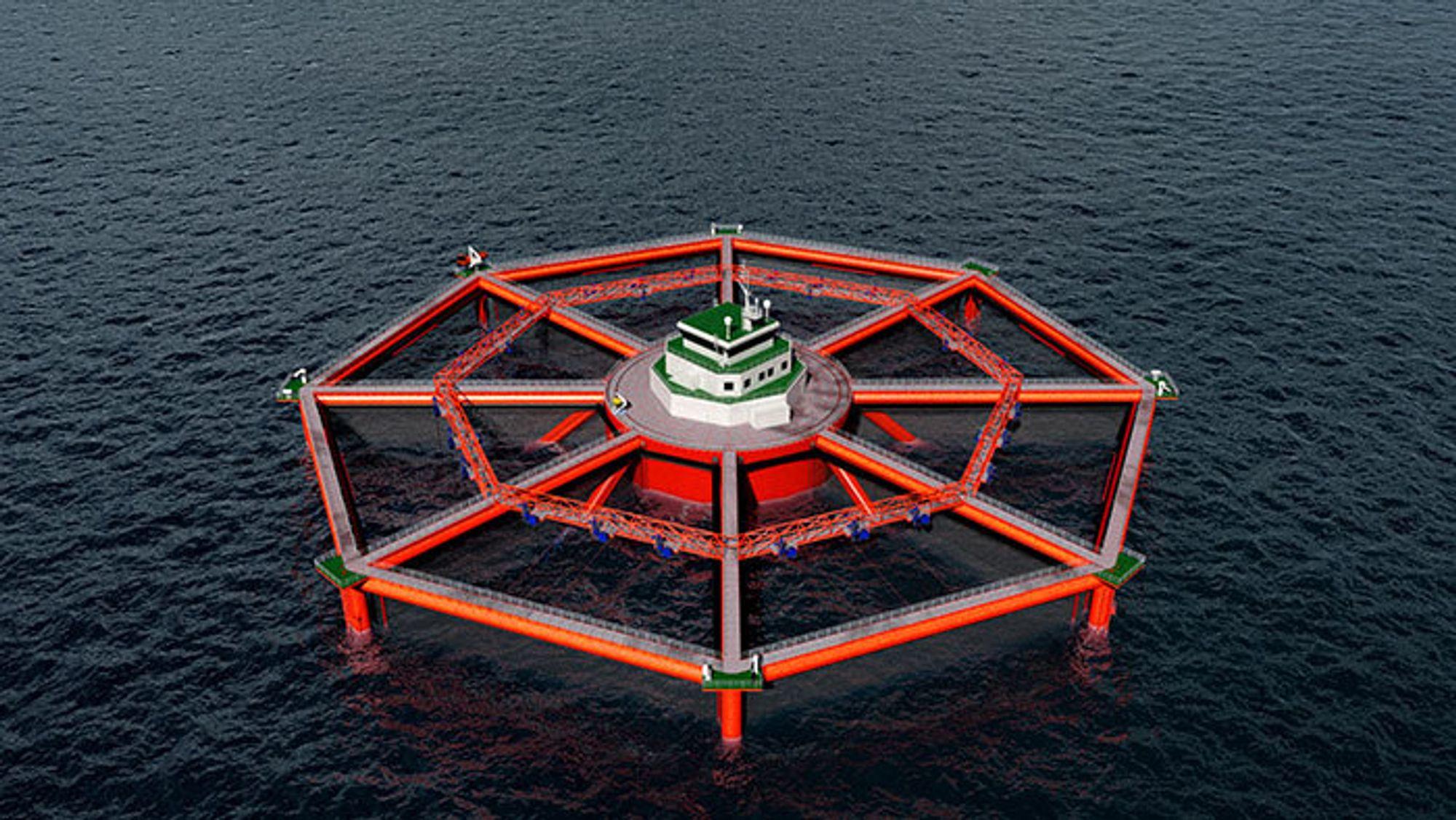 En ny rigg som vil gjøre det mulig med lakseoppdrett på åpent hav, er anslått å koste halvannen milliard. Gjennomføringen er avhengig av at det tildeles løyver verdt over 1,1 milliarder. Illustrasjon.