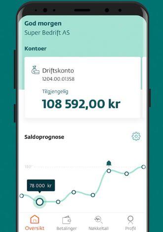 Skjermbilde fra DNB Puls-appen på Android.