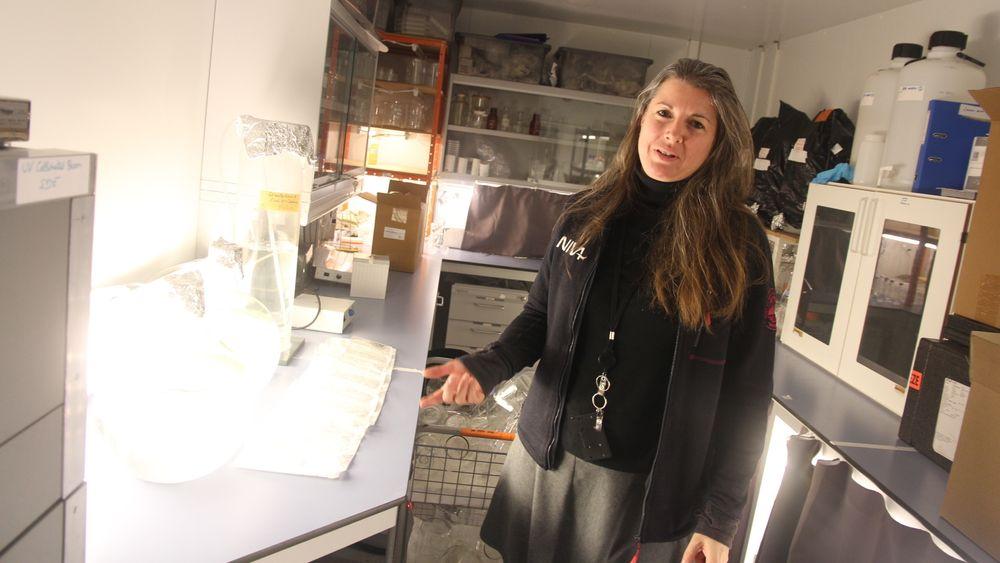 Stephanie Delacroix viser fram labben til NIVA hvor de tester ballstvann med kulturmetoden. Foto: Arne Fenstad.