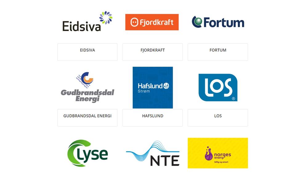 Norge har 124 nettselskaper og 113 strømselskaper. Mange av dem har samme navn og logo. Det forvirrer kundene, ifølge NVE.
