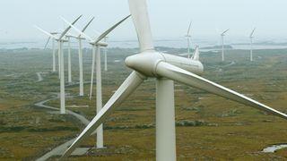 BKK vurderer vindkraft – men eierkommunene sier nei