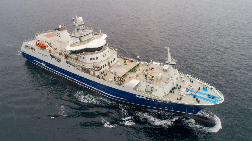 Norwegian Gannet, Hav Lines slakteskip for laks og ørret, kan måtte halvere kapasiteten om ikke rederiets klage fører fram.
