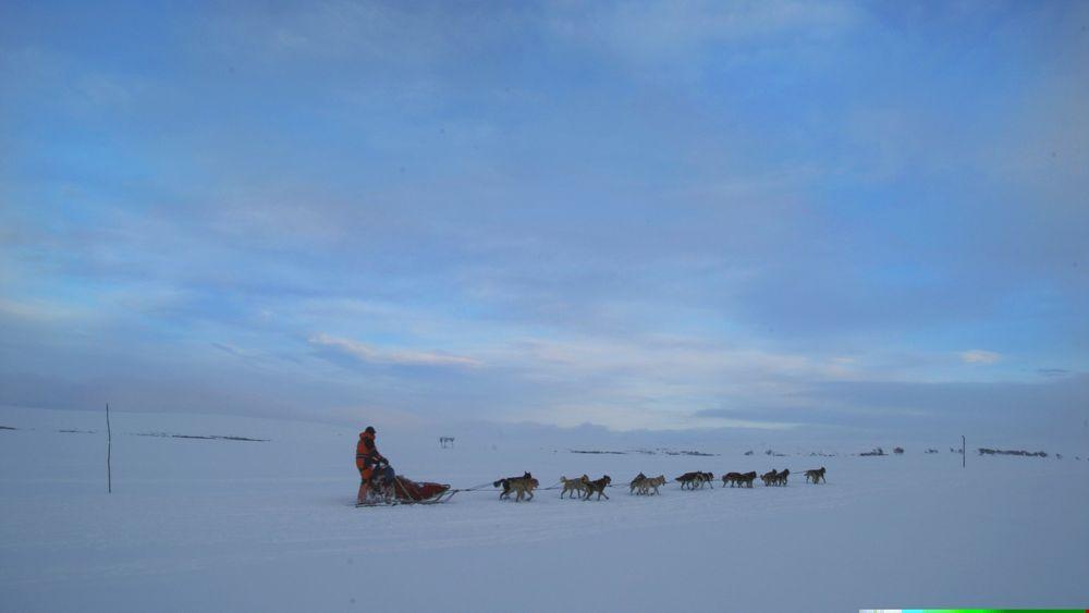 Illustrasjonsbilde fra Finnmarksløpet.