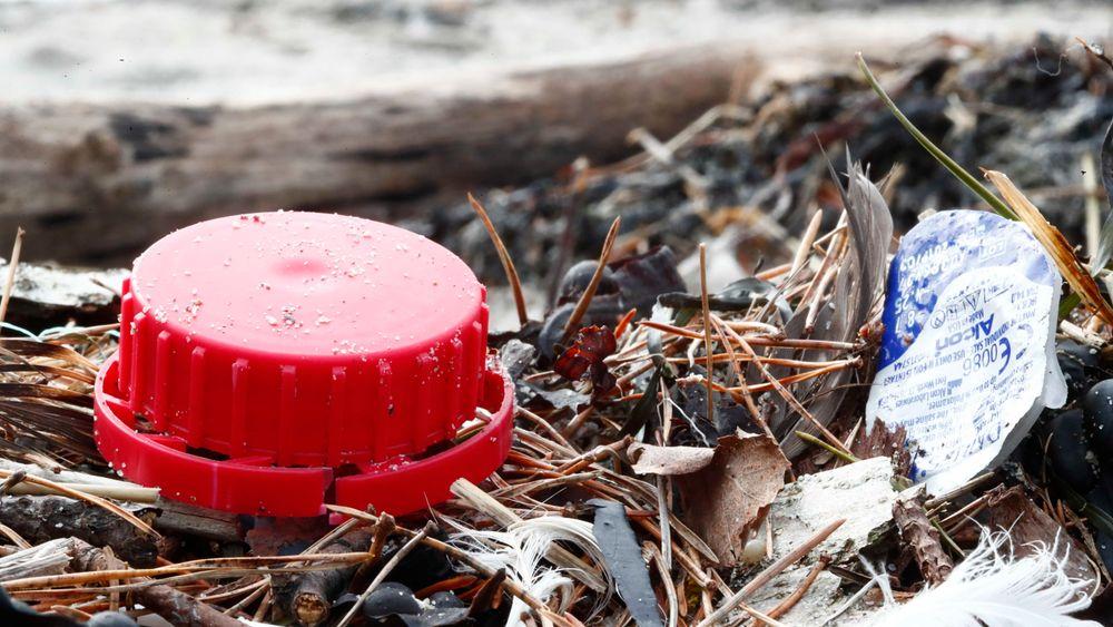 Havstrømmene gjør at det samler seg mye mer plastsøppel på kysten av Vestlandet enn det som er vanlig andre steder i verden.