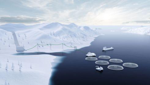 Mener Enova gjør det vanskelig å gjennomføre smarte klimatiltak med rask effekt