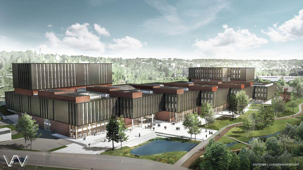 Skisse av det nye universitetsbygget, Livsvitenskapsbygget, som skal bygges i Oslo.