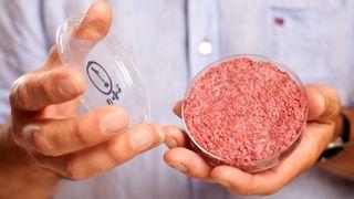Kan ha enorme miljøgevinster: Norsk prosjekt dyrker frem kjøtt