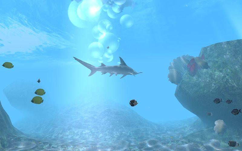 Дайвер: Глубоководных приключений - подводные фото видео.