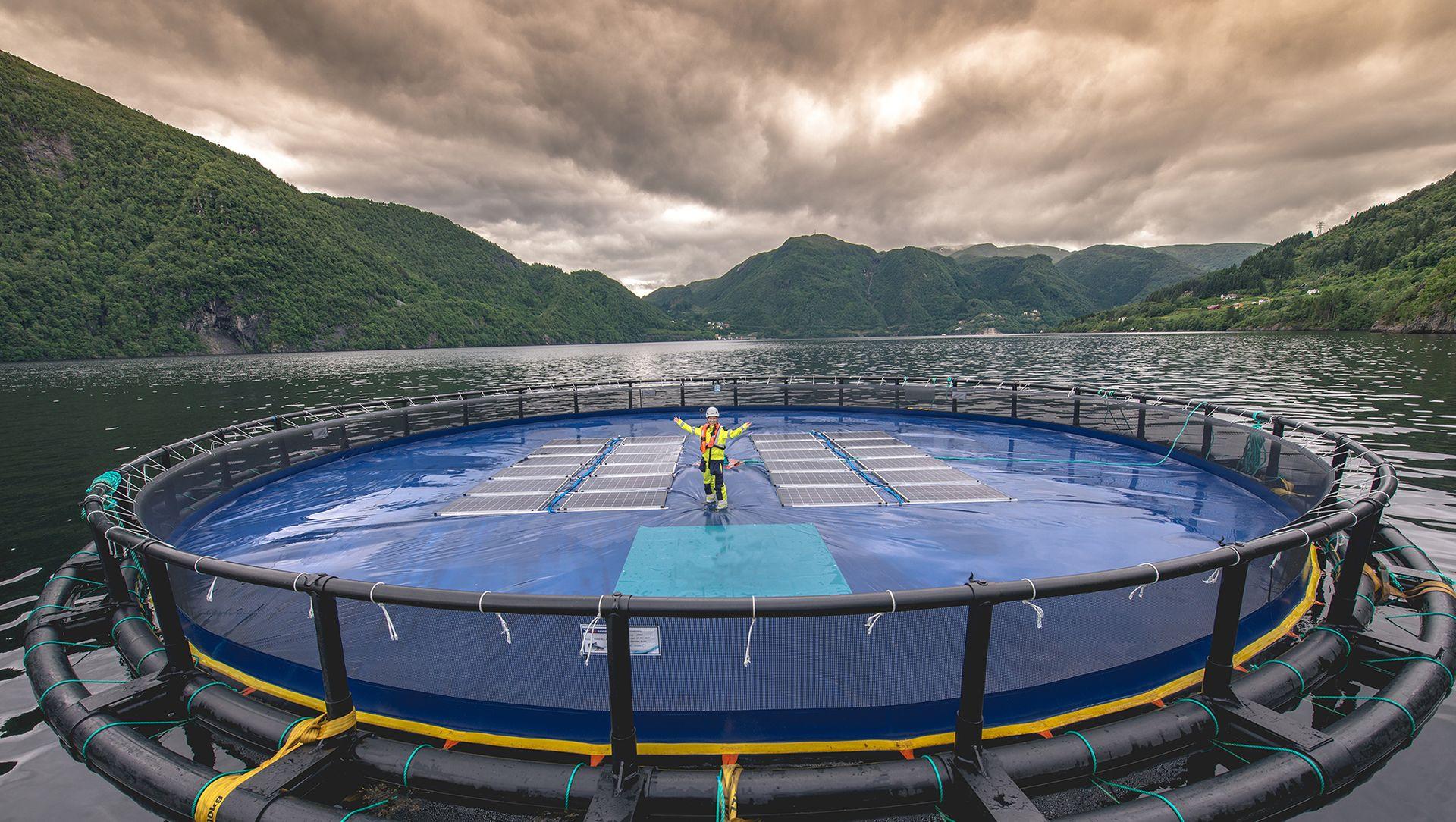 Ocean Suns anlegg for flytende solenergi