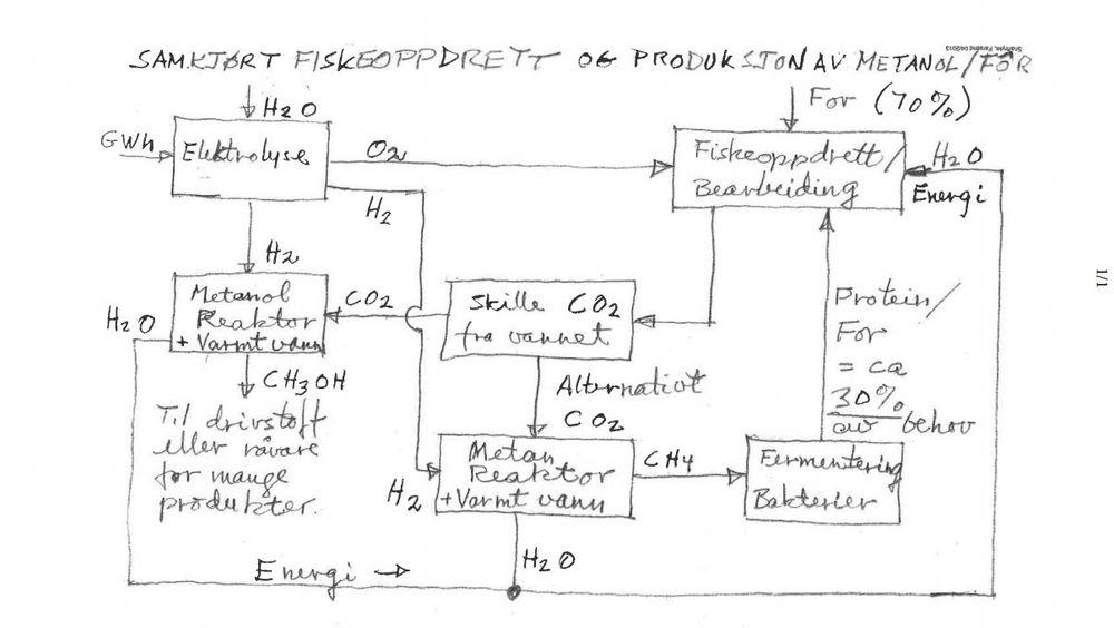 Ved å ta ut CO2 fra vannet, behandle gassen og kjøre den gjennom en fermenteringsmaskin kan den bli til fôr igjen, ifølge patentsøknaden.
