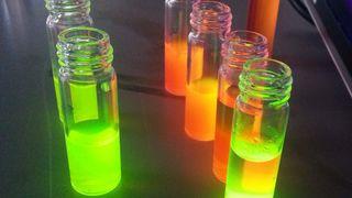 Lysende kjemikalier skal redde oppdrettsfisk fra ammoniakk-døden