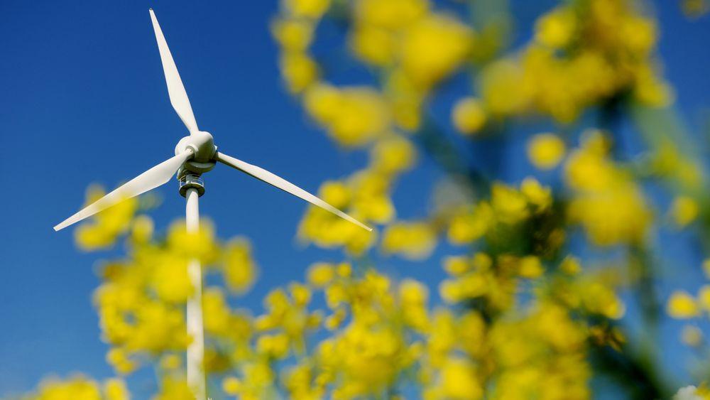 Kraftproduksjonen i Norge må økes dersom man skal klare klimamålene for 2030, slår Statnett fast i en ny rapport.