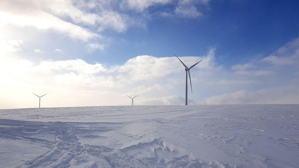 Vindkraftverket Raggo1 på Finnmarksvidda. Parken er bygget ut med 15 Siemens-turbiner, hver på 3 MW. Søknadene som nå foreligger om videre utbygging på vidda, ligger alle utenfor området NVE vil prioritere i Finnmark.