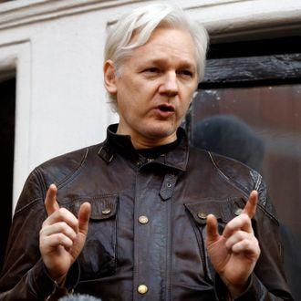 Wikileaks-gründer Julian Assange.