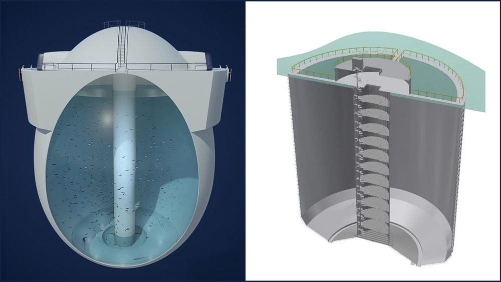 Hauge Aquas Egget til venstre og Marads Fish Farm-patent, som er gjengitt i Patentstyrets dokument, til høyre.