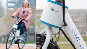 Delft%20Steer%20Assist%20dubbel.300x169.
