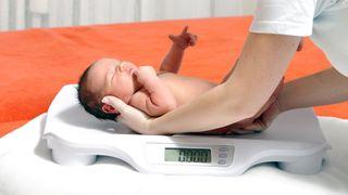 Fluorstoffer gir en farlig cocktail-effekt: Hemmer utviklingen til fostre