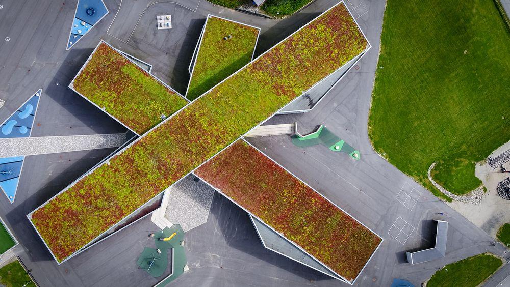 De norske selskapene Greenbeat og Agilis skal gjøre grønne tak smartere med sensorteknologi, tingenes internett (IoT), big data og maskinlæring.