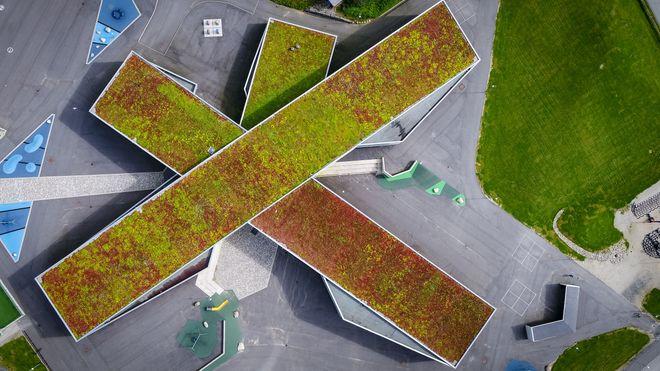 Greenbeat Rainbrain blågrønne tak sensorer iot